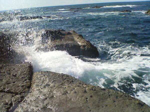 ブラー真鯛/波強し
