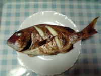 ブラー真鯛/塩焼き