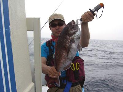 釣れてしまった62cm真鯛