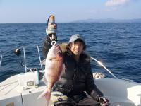 待望の陸奥湾真鯛