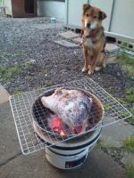 七輪でカブト焼き