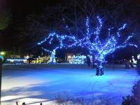 鷹巣米代児童公園