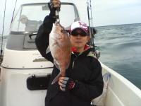 2011初真鯛 52cm